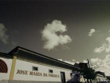 JMF – José Maria Fonseca